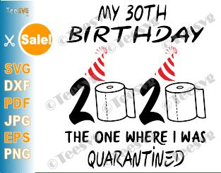 30th Birthday Quarantine SVG files The One Where I Was Quarantined 2020 My Thirty Shirt For women men