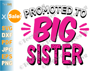Promoted to Big Sister SVG New Sibling New Sis Announcement Infant Toddler Kids PNG Girl Cutting file Shirt Download