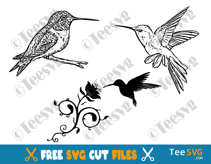 Hummingbird SVG Free Download Bundle Cute Simple Silhouette Image File Flying Hummingbirds Flowers Cricut DIY Crafts Drawing